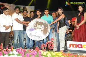 Iddarammayilatho Music Release