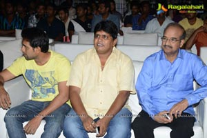 Race Gurram Success Meet