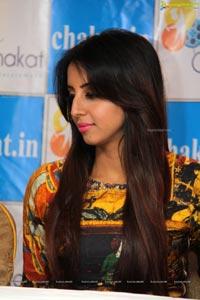 Chakat Website
