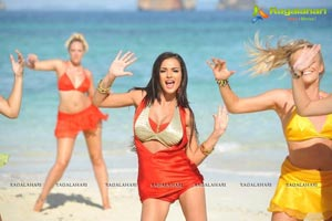 Amy Jackson Hot Photos