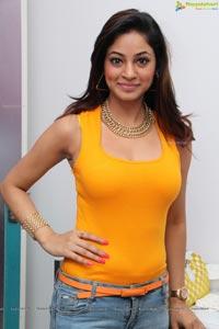 Shilpi Sharma Hot Photos