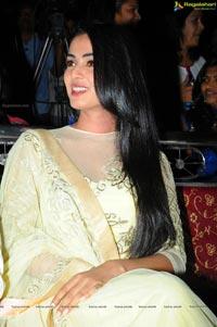Sonal Chauhan Legend Success Meet