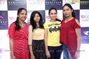 Hamstech Pixel Perfect 2018