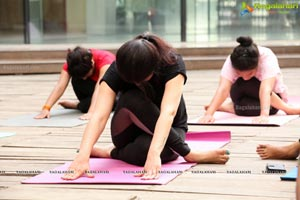 Period YOGA by Rina Hindocha