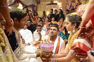 MVVS Murthy Grandson Sri Bharath Wedding Photos