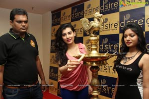 Desire Exhibition at Taj Krishna
