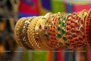 Akritti Elite Exhibition Athithi Das
