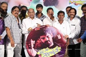Nenu Naa Nagarjuna Movie Audio Launch