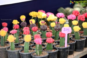 7th Edition of All India Horticulture