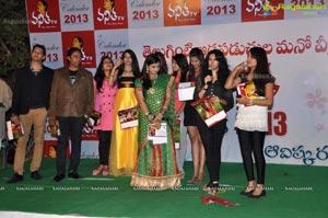2013 NTV Vanitha Calendar