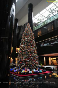Christmas Annual Tree Lighting