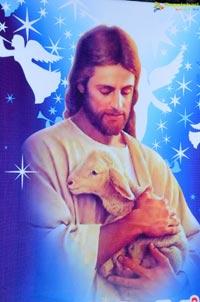 Tollywood Semi-Christmas Celebrations