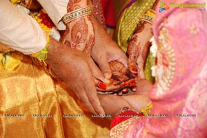 Vijay Karan-Aashna Wedding Photos