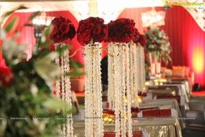 Vinayak Veena Wedding Reception