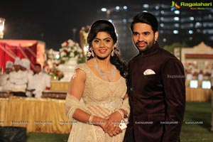 Vinayak Veena Wedding Reception