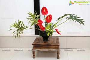 Ikebana Aura and Flora