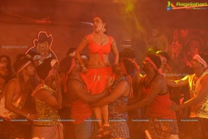 Raghava Reddy Movie Song Shooting Coverage