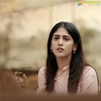 Colour Photo Movie Gallery