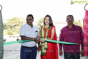 Pochampally Ikat Art Mela 2019 at NSIC Exhibition Hall