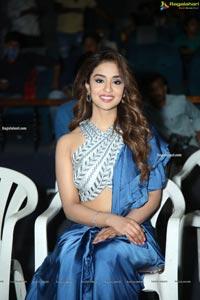 Radha Krishna Movie Trailer Launch