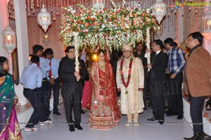 Kanika Ankush Wedding Reception