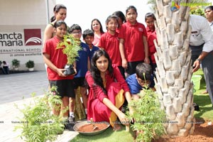 Go Green with YFLO
