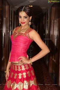 Diksha Panth Revisit Royalty