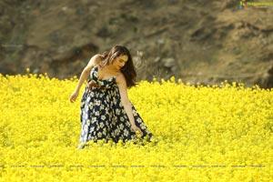 Sammohanam Telugu Cinema Stills