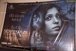 Screenplay Movie Press Meet