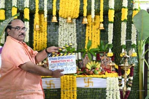 Sitara Entertainments Production No.8 Muhurat Photos