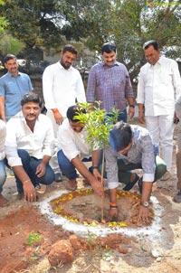 Harish Shankar, MLA Kranthi Participate in Haritha Haram