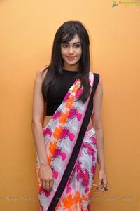 Bollywood Heroine Adah Sharma