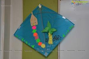 Designer Kites