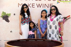 Grape Stomping Festival