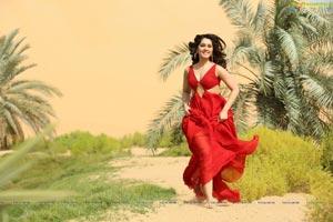 Touch Chesi Choodu Telugu Cinema Stills