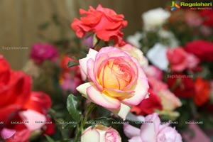 Annual Rose Show by Hyderabad Rose Society