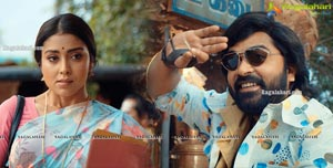 AAA Movie Gallery