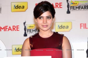 61st Idea Filmfare Awards 2013