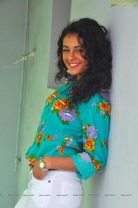 Run Raja Run Heroine Seerat Kapoor
