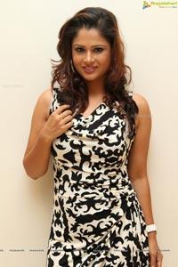 Shilpa Chakravarthy SIIMA 2014