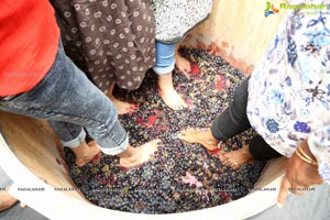 Grape Stomping Kitty Party