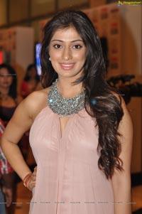 South Indian International Movie 2012 Awards (SIIMA) Day 1 at Dubai World Trade Centre