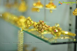 Gramin Hastakala Vikas Samiti National Silk Expo