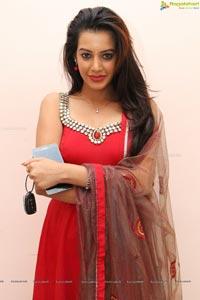 Indian Actress Diksha Panth