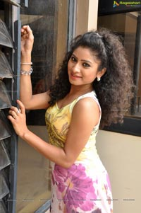 Telugu Heroine Vishnupriya