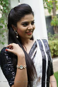 Sree Mukhi in Saree