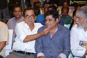 S V Rangarao Book Launch By Megastar