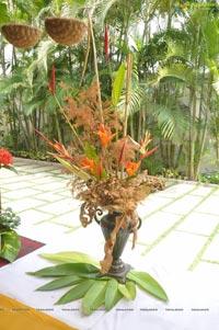 lkebana Dry Fresh Flower Exhibition