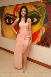 Richa Panai at Muse Art Gallery