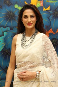 Shilpa Reddy in Saree
